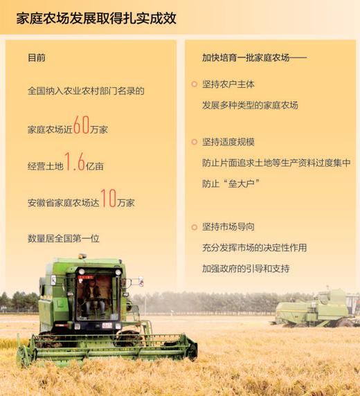 家庭农场 农业高质量发展生力军(经济发展亮点多韧性足)